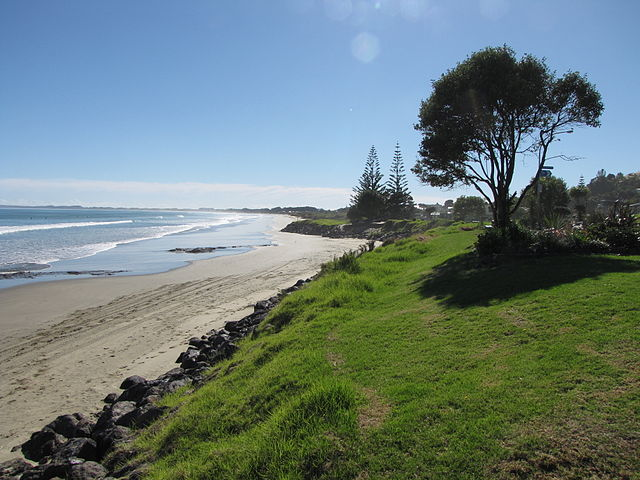 6 Coastal Towns You Need To Visit In New Zealand Transfercar