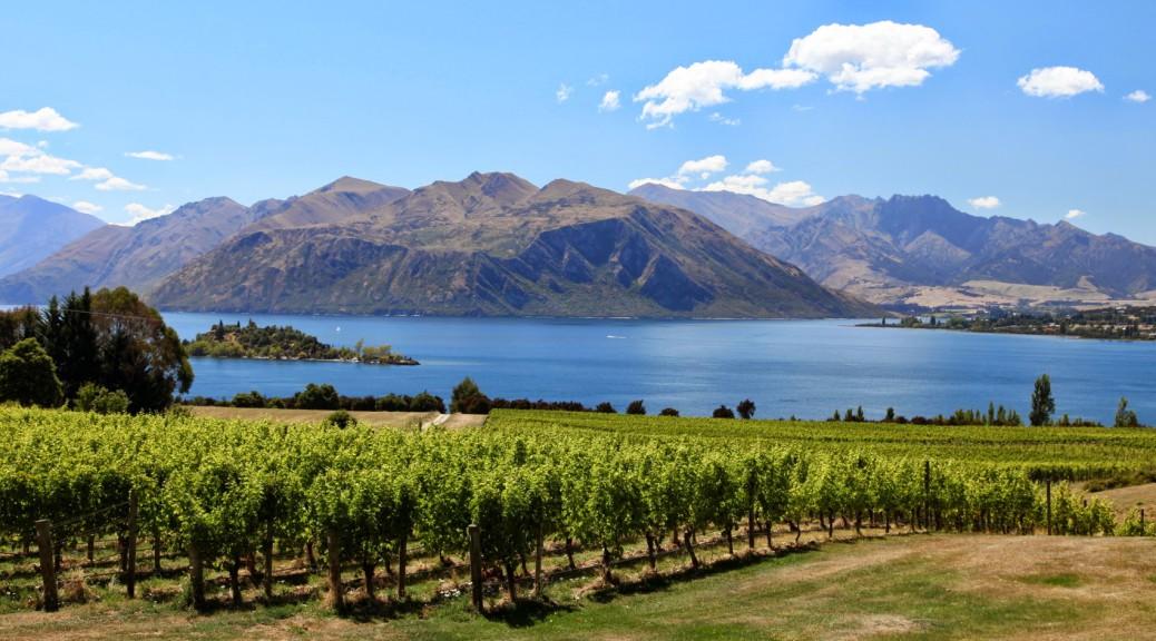Berge-in-NZ (108)
