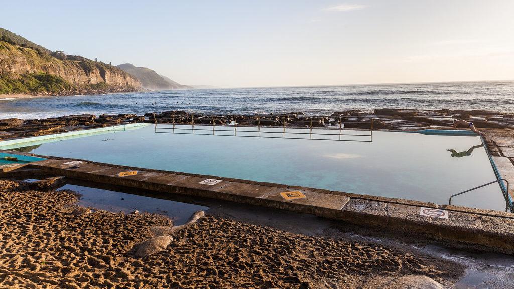 coalcliff-rock-pools