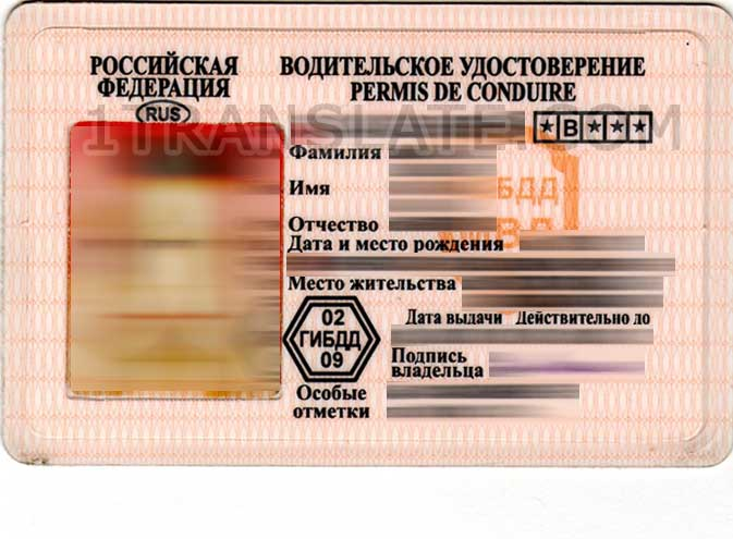 Driver's licence translated within a couple of hours online
