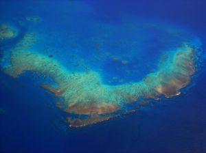 The Great Barrier Reef Australia Transfercar