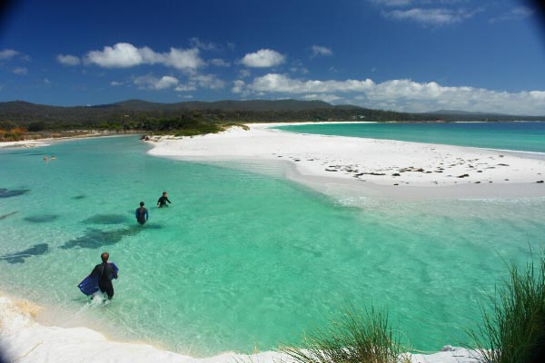 Tasmania wild by nature transfercar for Best christmas towns on east coast